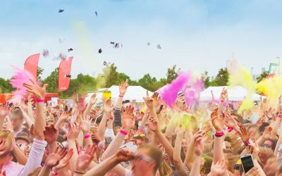 No green testing ground without a festival summer?